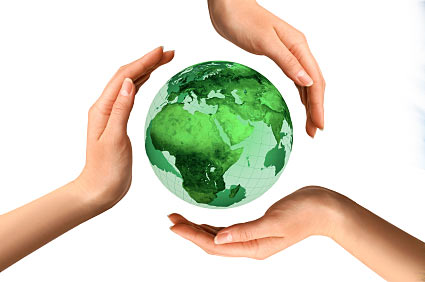 Help protect the environment essay